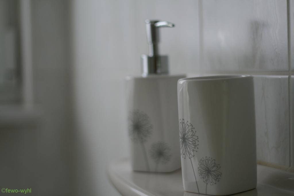 Bad und Dusch/WC der Ferienwohnung
